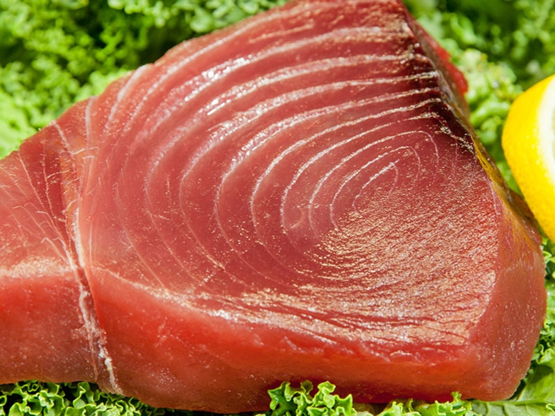 Gallery-Photo-Tuna.jpg